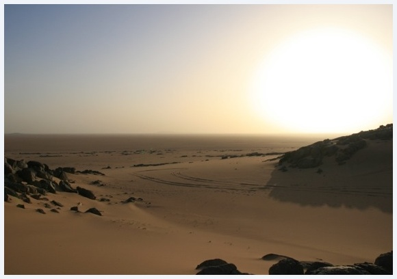 Sunset and desert tracks in the Sahara